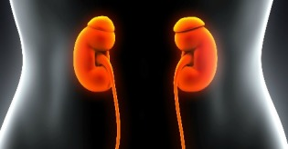 Kidneys_GU Blog_FB